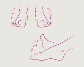3 venų mankštos pratimo, pėdų sukimo, iliustracija